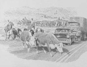 Cattle Crossing Road 13 x 17.5